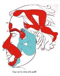 Schéma de réflexologie faciale de Rodin