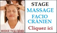 Stage_de__Massage_facio_cr__nien_Bordeaux